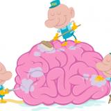 očista mozku